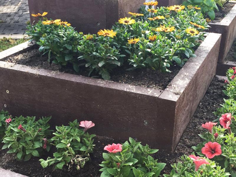 Blumenbeete / Blumentreppen